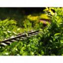 HYUNDAI Taille-haie sur perche électrique 550 W 41 cm 16 mm 4 postions : -45° / 0° / 45° / 90 ° HTHEP550